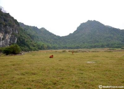 butterfly valley in halong bay vietnam
