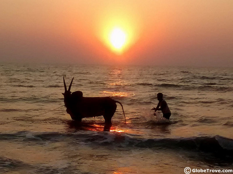 Sounds of Goa