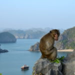 HOLIDAYS TO VIETNAM: A Vietnam Travel Guide