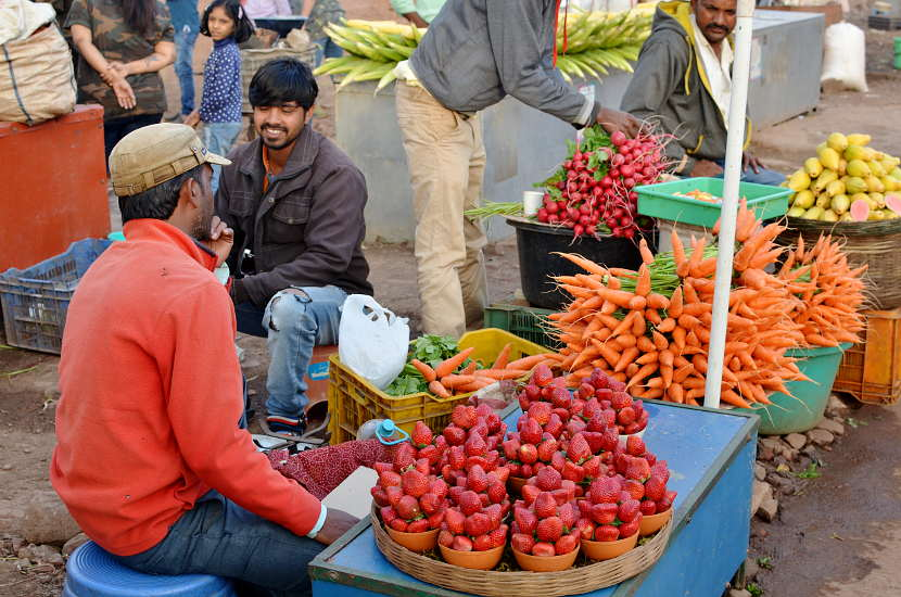Spotting fruit vendors in Panchgani on our Bangalore to Nashik Road trip