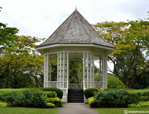 The Singapore Botanic Gardens: Walking Through Nature