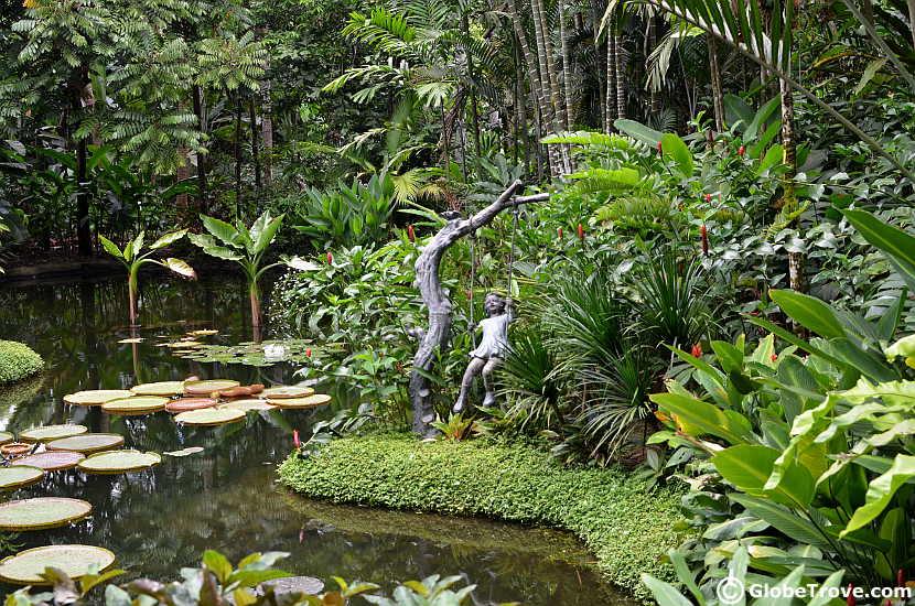 The ginger garden in Singapore Botanic Gardens