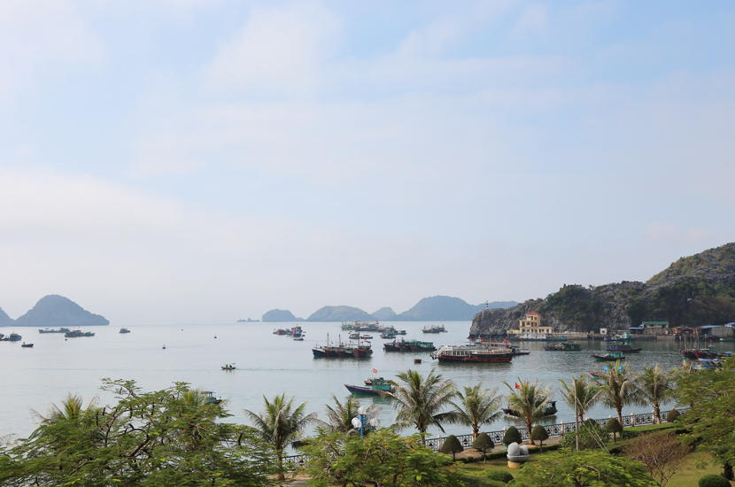 When asked where to go in Vietnam, Elisa suggested Cat Ba Island.