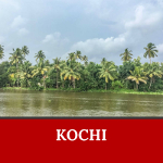 Kochi is one of the places to visit in India that you should not miss