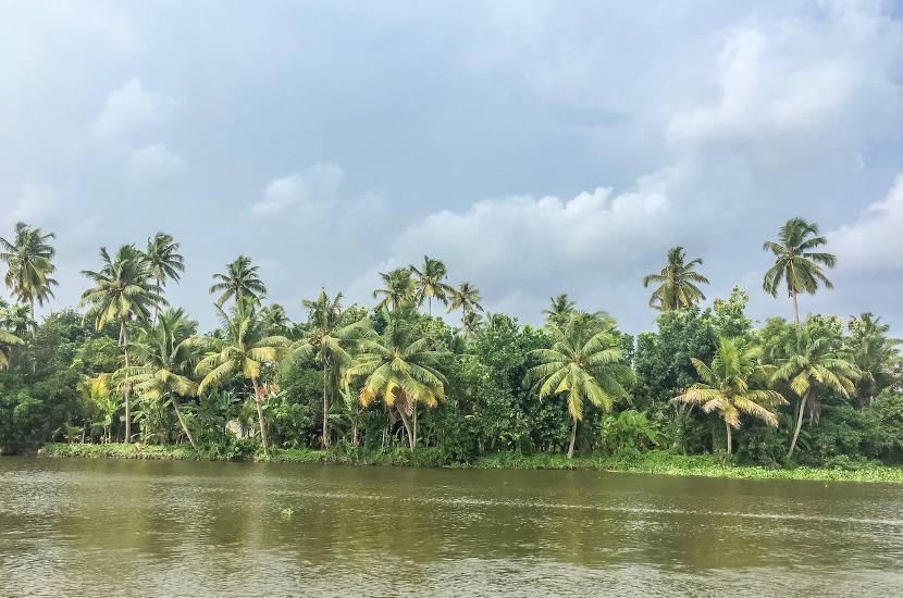 Kochi should definitely be on your list of places to visit in India.