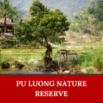 Where to go in Vietnam? Maybe the answer is Pu Long National Park