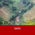 Where to go in Vietnam? Maybe the answer is Sapa