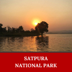 Satpura National Park is one of the places to visit in India that you should not miss