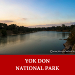 Where to go in Vietnam? Maybe the answer is Yok Don National Park