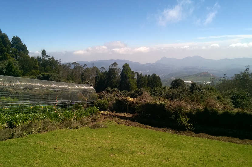 Some of the views that you can catch in Ooty