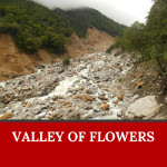 Valley of flowers is one of the UNESCO Heritage sites in India
