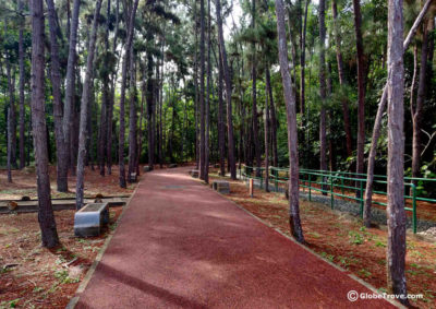 Bukit Shahbandar Forest Recreation Park &the Nine hills trek