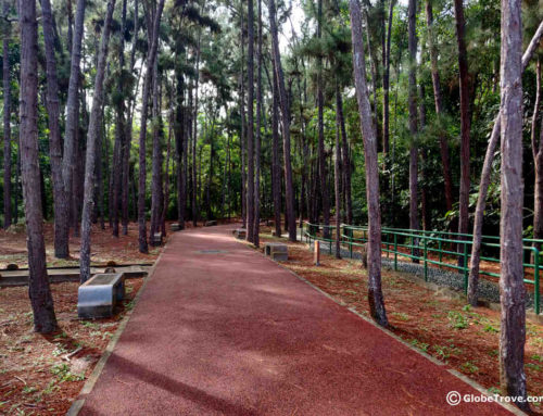 Shahbandar Forest Recreation Park & The 9 Hills Trek