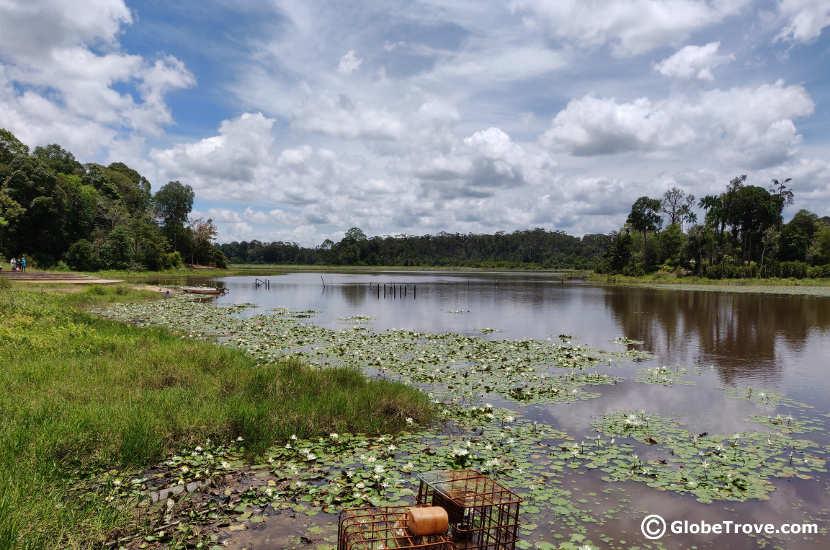 Another gorgeous view of Lake Merimbun