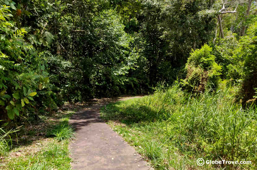 The walking trail along Lake Merimbun